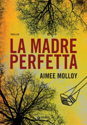 La madre perfetta – Aimee Molloy